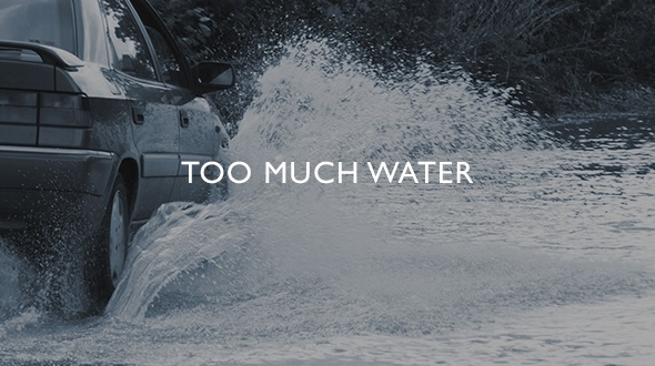 Too much water